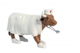 Kráva Zdravotní sestra