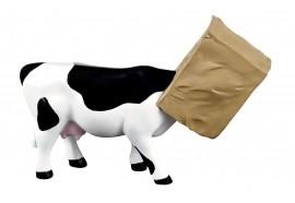 Kráva schovaná